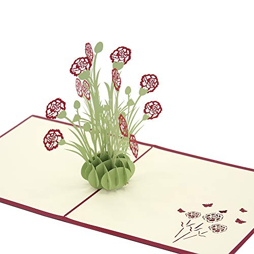 Cute Star Carnation 3D Pop Up Greeting Cards with Envelope, Gift for Mother's Day Children's Day Birthday Best Wish Good Luck Wedding Invitation Congratulation (Red Cover-B)