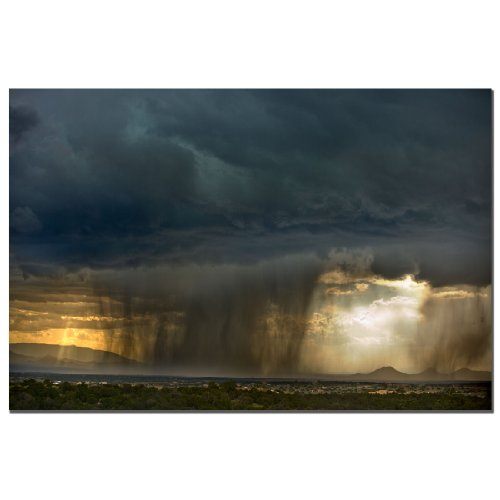 Summer Storm by AIANA, 16x24-Inch Canvas Wall Art