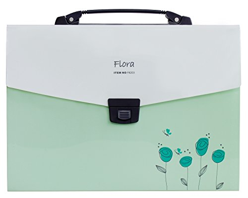 Shuter Accordion Expanding File Folder, 13-Pockets, A4 Size, Handle and Tabs, Buckle Closure (Green)