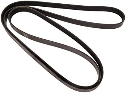 Continental Elite 4060822 Poly-V//Serpentine Belt