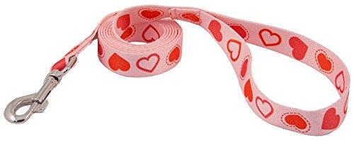 country-brook-designa-1-inch-happy-hearts-leash-6-feet