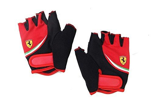 Ferrari Gloves, Multicolor, Large
