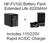 Sony NP-FV100 5 Hour Replacement Battery + Rapid AC/DC Battery Charger For The Sony DCR-SX44 DCR-SX63 DCR-SX83 DCR-SR68 DCR-SR88 SONY HDR-CX110 HDR-CX150 HDR-CX300 HDR-CX350 HDR-CX500V HDR-CX550V HDR-CXR150 XR350V XR550V