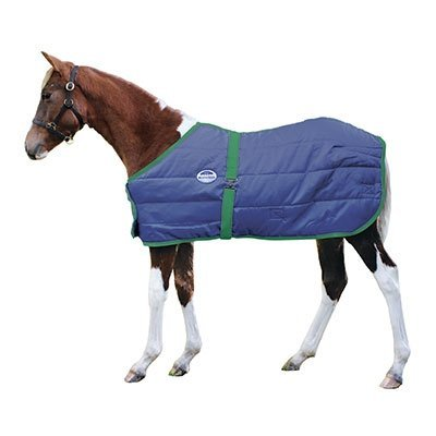 Weatherbeeta 300D Growing Foal Blanket - Navy/Hunter