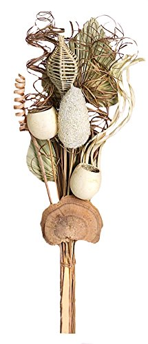 "Worth Imports 25"" Mixed Natural Pod Bouquet"