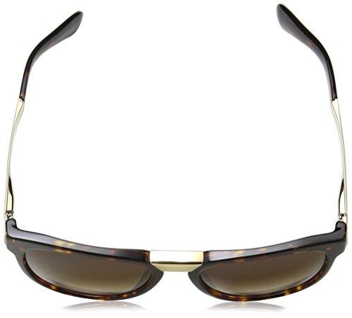 Dolce amp; dg4257 Havana browngradient dark Sonnenbrille Marron Gabbana 6FqxrA6