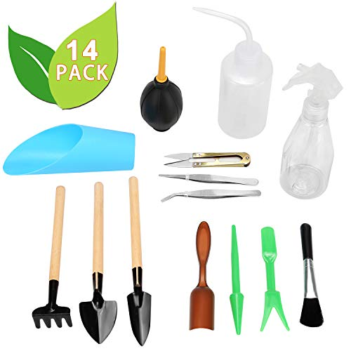 - Metrmiss 14 Pieces Bonsai Set Succulent Garden Hand Tools with Mini Rake Bud & Leaf Trimmer Kit Shovel Planting Transplanting Watering Can Plant Care for Indoor Miniature Fairy Gardening Lovers