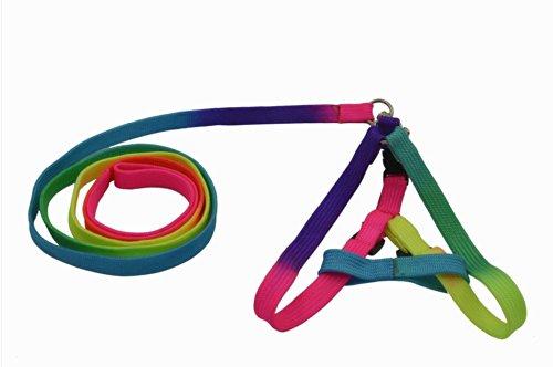 Gosear Colorful Ajustable Lead Mascotas Arnés del Perro Acarreo Cable Accesorio