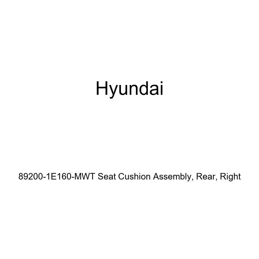 Right Genuine Hyundai 89200-1E160-MWT Seat Cushion Assembly Rear