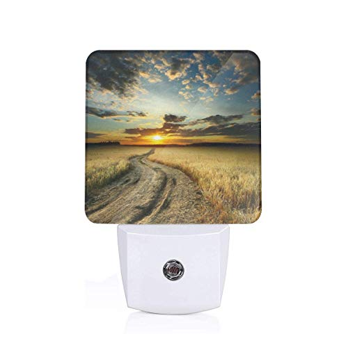 Colorful Plug in Night,Road in The Field with Ripe Yellow Wheat Garden Under Cloudy Sunset Sky Landscape,Auto Sensor LED Dusk to Dawn Night Light Plug in Indoor for Childs - Chandelier Wheat Light 4