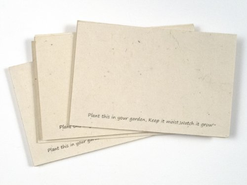 (Handmade Seeded Plantable Recycled Note Paper 100 Sheets Each 6 x 4 Inches (2-Pack))