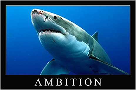 com great white shark ambition motivational poster x great white shark ambition motivational poster 24x36 persistence empowering