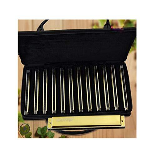PNLD Armónica, armónica de 28 Hoyos y 12 Tonos, armónica Profesional Juvenil for Adultos, Oro, Plata (Paquete de Regalo…