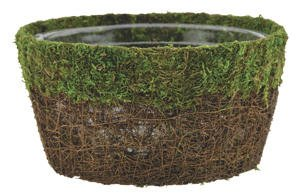 Moss and Vine Fairy Garden Dish 12