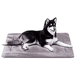 JoicyCo Dog Bed Mat Large Soft Crate Pad 42 In- 100% Machine Washable Anti-Slip Fleece Mattress Luxury Rich Color (42, Grey)
