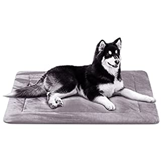 JoicyCo Large Dog Bed Crate Mat 42 in Washable Pet Beds Soft Dog Mattress Anti-Slip Kennel Mats,Grey L