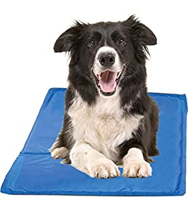 Hugs Pet Products Chillz Pressure Activated Pet Cooling Gel Pad