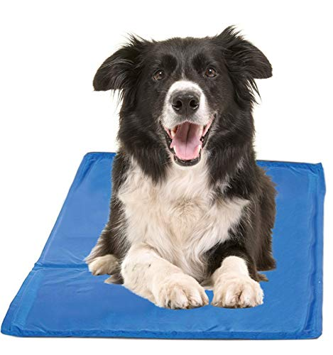Chillz Cooling Pad For Dogs - Pressure Activated Gel Dog Cooling Mat - No Need to Freeze Or Chill - Dog Gel Pads Keep Your Pet Cool, Use Indoors, Outdoors or in the Car ()