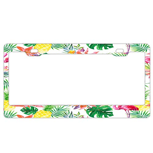 Stainless Metal License Plate Frame, Flamingo Floral Flowers Costum Licenses Plates Frames, Car Licenses Plate Covers Holders for Women/Men]()