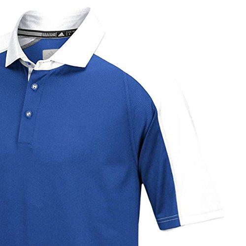 Adidas Heren Climalite Modern Varsity Polo Royal / Wit