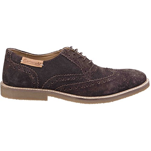 Cotswold Mens Chatsworth Suede Oxford Brogue Lace Up Casual Shoes Brown