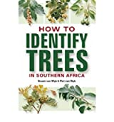 [HOW TO IDENTIFY TREES IN SOUTHERN AFRICA BY VAN WYK, BRAAM]PAPERBACK