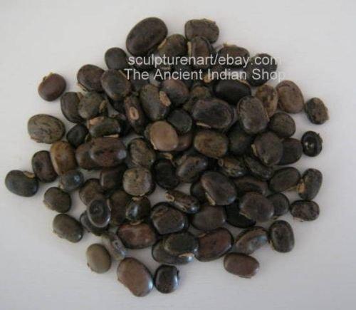 Black Kauch Seeds, Mucuna Pruriens Indian Raw & Whole Herbs, 100 GM (3.5 oz)