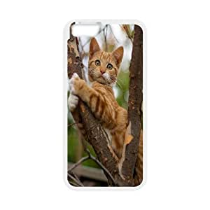 fashion case Custom High Quality WUCHAOGUI cell phone case cover Grumpy Cat,Because Cats protective case cover For zHbZaGBHsNH Apple iphone 6 4.7 inch screen case covers - case cover-2