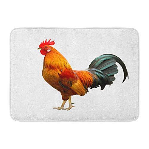 YGUII Doormats Bath Rugs Outdoor/Indoor Door Mat Red Cock Beautiful Rooster Brown White Tail Chicken Portrait Bird Bathroom Decor Rug Bath Mat 16X23.6in (40x60cm)