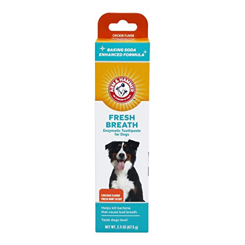 (Arm & Hammer Dog Dental Care Fresh Breath Enzymatic Toothpaste for Dogs | No More Doggie Breath | Safe for Puppies, Advanced Care, Chicken Flavor)