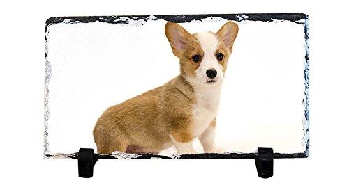 - DKLZY Custom Photo Slate, Personalized Slate - Corgi Slate Plaque, Photo Gift, Wedding Photo, Wedding Gift, Pet Memorial