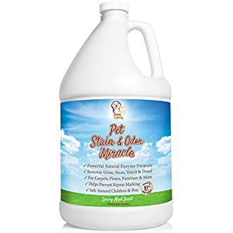 Pet Stain & Odor Remover, Enzyme Cleaner, Odor Eliminator, Best Carpet Stain Remover, Pet Odor Eliminator, Stain Remover, Odor Neutralizer, Cat Urine Smell - Cleaner - Eliminator, Sunny and Honey, 1 Gallon