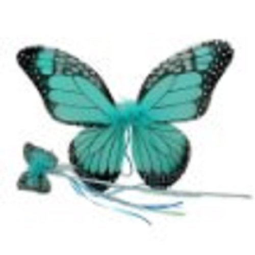 Girls Monarch Butterfly Wings & Wand Set (Turquoise, One Size) (Butterfly Costume For Girl)