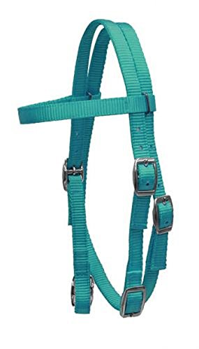 (Showman PONY Size Premium TEAL Soft Durable 2 Ply Nylon Browband Headstall Adjustable Bridle)