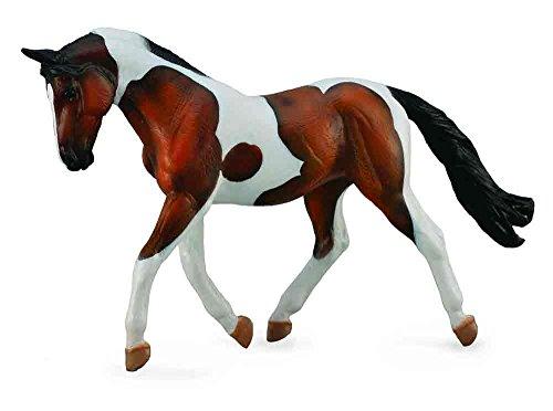 horse anatomy model - 9