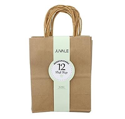 Brown Kraft Bags with Handles
