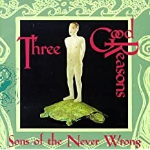 Three Good Reasons by Sons of the Never Wrong (1995-09-05)