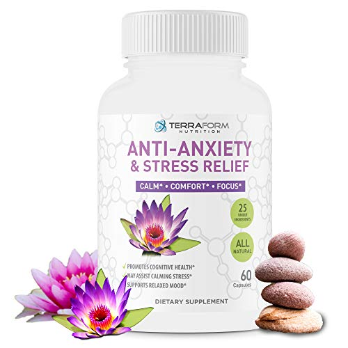 Premium Anxiety and Stress Relief Supplement – Natural Formula Supports a Calm, Positive Mood – Stress Support, Anti-Anxiety, Mental Focus & Relaxation – Made in USA – 1 Month by TerraForm Nutrition