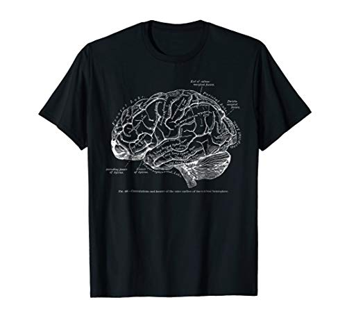 Vintage Human Anatomy Brain Tee - Womens Brain T-shirt