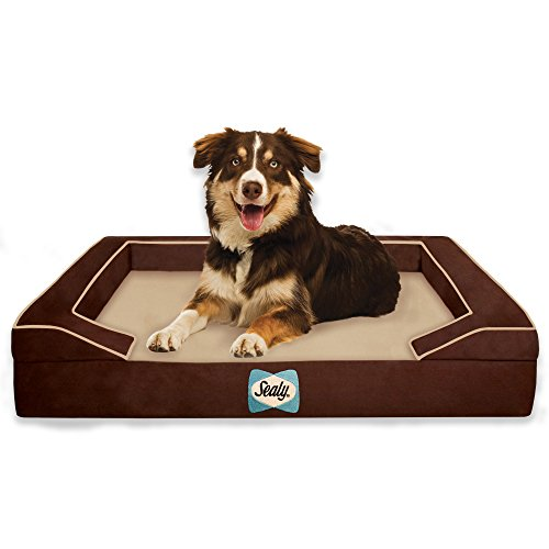 Sealy Dog Bed with Quad Layer Technology, Medium, Autumn Brown