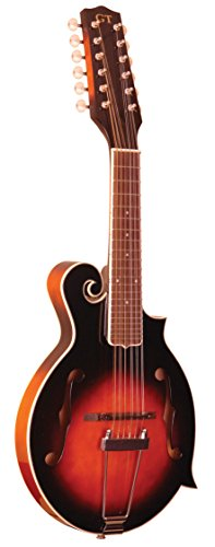 Gold Tone 12-String Guitar Mandolin F-12 by Gold Tone (Image #1)