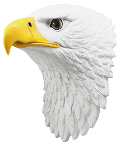 Eagle Head Wall Decor - Ebros Large Majestic Bald Eagle Wall Decor 15