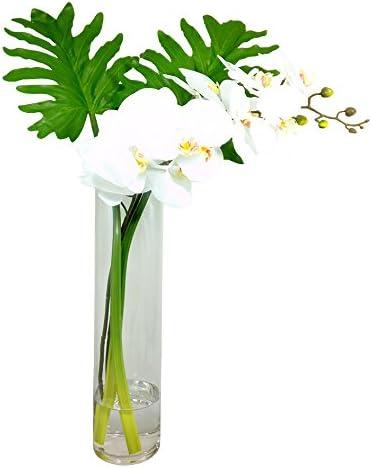 D D Inspiration Phalaenopsis Orchid And Xanadu Leaves Floral Arrangement In Vase White Home Kitchen