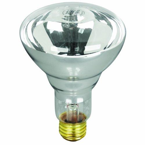 - Feit Electric 100BR30/FL-12 100-Watt R30 12-Volt Pool/Spa Flood Reflector