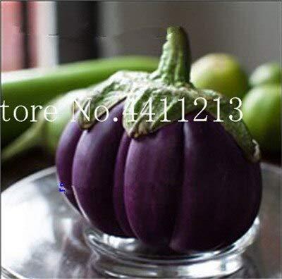 Verduras Kalash Nuevas 200 PC Berenjena orgánica, semillas para ...
