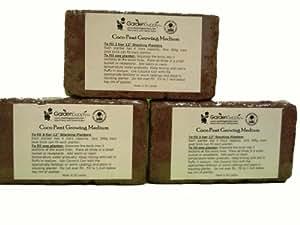 Coco Peat Organic Growing Medium, Set of 3 Bricks