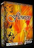 Flower EPS Vector Sign Clipart Flowers