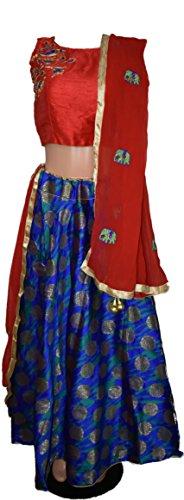 Women's Embroidered Stitched Designer Indian Ethnic Chaniya Choli for Navratri