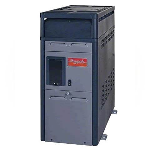 Raypak 014784 PR156AENC 150000 BTU Natural Gas Heater - Raypak Ignition Control