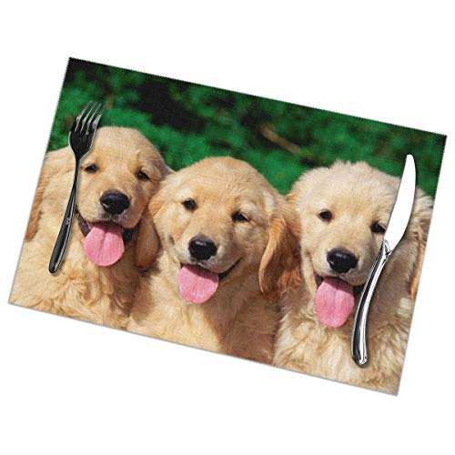 Eleanore Johnson Placemats Puppies Dog Washable Placemats for Dining Table Set of 6 Kitchen Table Mats Non Slip Wipe Clean